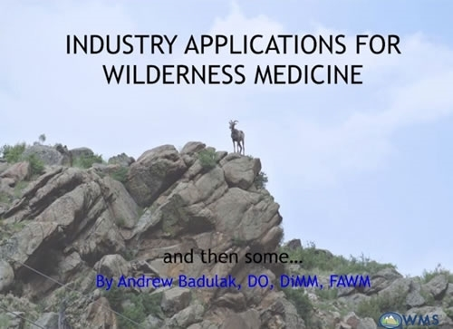Industry Applications for Wilderness Medicine - Andy Badulak