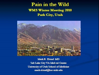 Pain Management in the Wilderness Setting - Mark Elstad