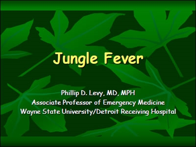 Jungle Fever - Levy