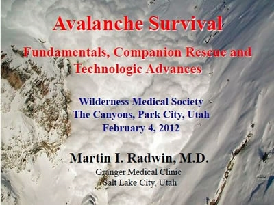 Avalanche - Marty Radwin