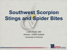 Southwest Scorpion and Spider Bites - Leslie Boyer