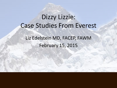 Everest Case Discussion - Elisabeth Edelstein