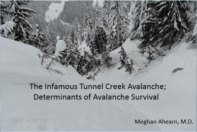 Avalanche Survival - Meghan Ahearn
