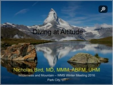 Diving at Altitude - Nick Bird